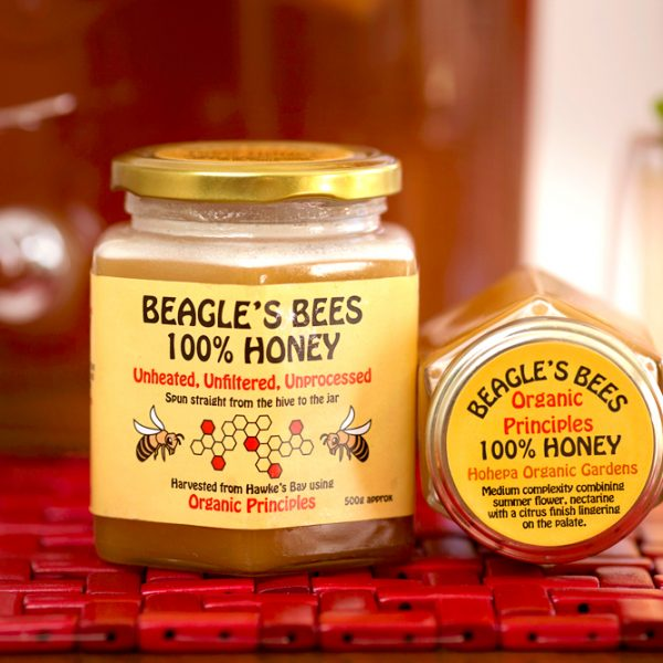 TerraLynnPhoto-Beagles-Bees-IMG_3313-Edit